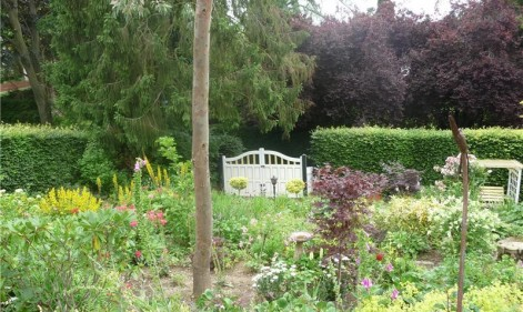 NGS North East 2016: your summer itinerary