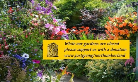Take a virtual tour with the National Garden Scheme and help support our nurses